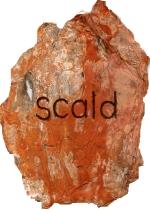 scald