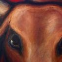 firebull-detail